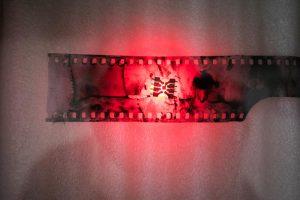 Biennale de Gentilly - Olivier Kotor